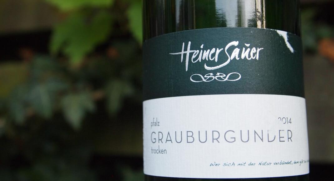 Pinot gris (of grauburgunder) van Sauer