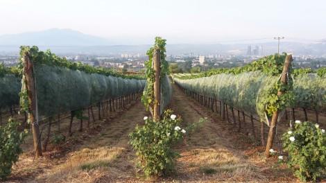 uitzicht op Skopje vanuit Kamnik