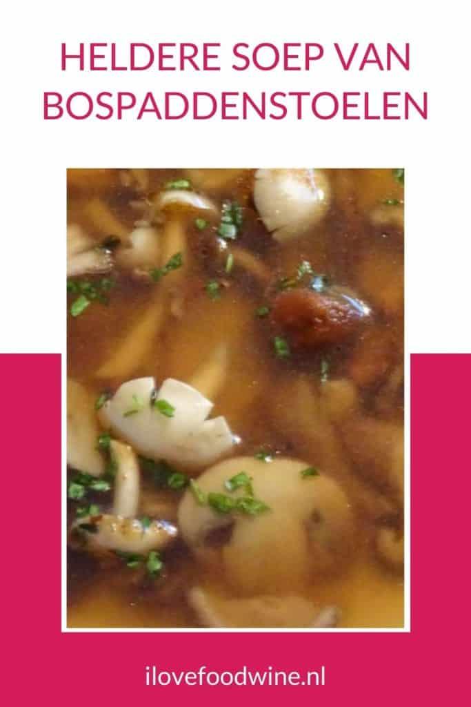 Deze heldere bospaddenstoelensoep is heerlijke licht soep als smaakmaker tussen het voor- en hoofdgerecht. Je kunt deze paddenstoelenbouillon natuurlijk ook zelf trekken, maar ik vind dat met deze bouillontabletten de paddenstoelensmaak nog net iets beter wordt. En het is zo een heel makkelijk soep recept. Lekker als voorgerecht, als lunch of gewoon tussendoor. Lees het bospaddestoelensoep recept op mijn website i love Food & Wine