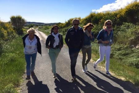 Languedoc wandelen in de wijngaard
