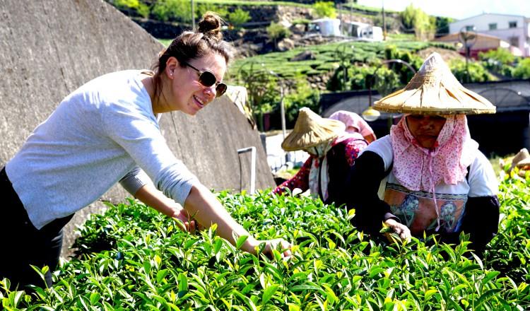 Kiona Malinka op de theeplantage