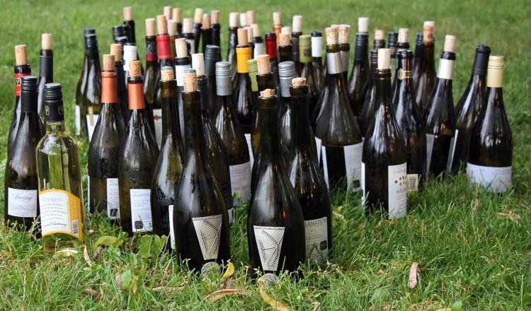 Welke wijn kies ik?