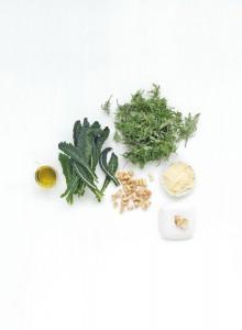 Ingrediënten boerenkool pesto
