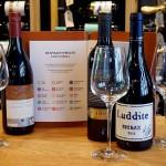 Wijnbar SHIRAZ symbolen met flessen en glazen