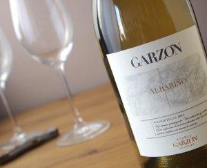 Garzón Albarino