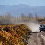 Wijngaarden in Argentinië van Fabre Montmayou