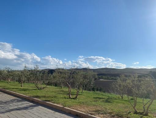 Uitzicht op de wijngaarden van Inurrieta