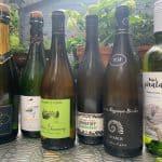 Witte wijnen Grapedistrict voor wijnworkshop Beurs van Berlage