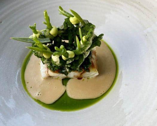 Restaurant De Loohoeve: Zeebaars met zeewier en verjus