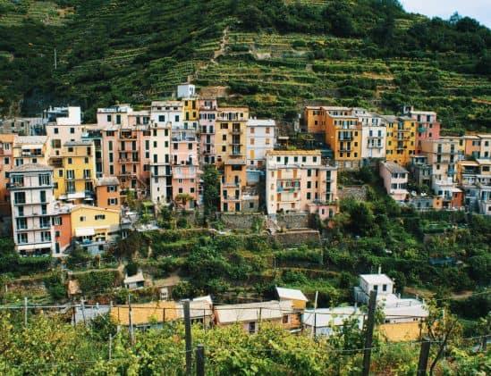 Wijngaarden in Italië