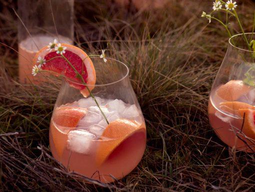 Gin-Tonic met grapefruit uit het kookboek Vegan Summer van Milou van der Will